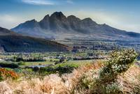 Wine Region, Capetown, South Africa