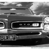 1967 GTO Poster BW Art Prints & Posters by David Caldevilla