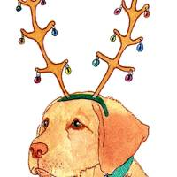 Christmas Lab Art Prints & Posters by Yvonne Carter