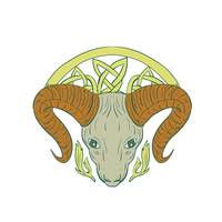 Ram Head Celtic Knot