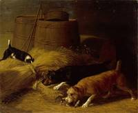 Thomas Hughes Hinckley - Rats in the barley sheave