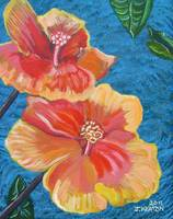 Hibiscus Flowers mini JOHNKEATONART