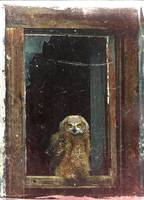 owl in building