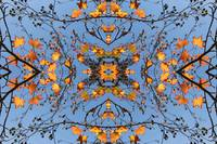 ORL-8762 Natural pattern 91