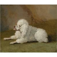 Jakob Philipp Hackert , PORTRAIT OF A POODLE