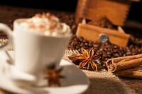 Close-up on star anise and cinnamon sticks with co