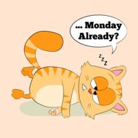 Even Cat Hates Monday