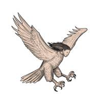 Harpy Swooping Tattoo