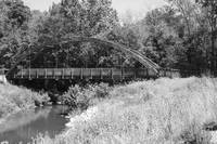 Wooded Bridge with  Reflection black and white