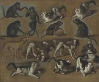 Jan van Pee A study of cats, monkeys and dogs