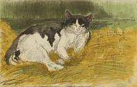 Old Black and White Cat in the Grass by Théophile