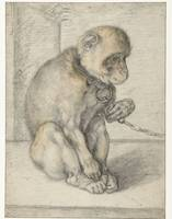 A Seated Monkey on a Chain, Hendrick Goltzius, 159