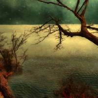 Tranquillity Bay Art Prints & Posters by RC deWinter