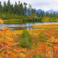 The Art Of Autumn Art Prints & Posters by Photography Moments