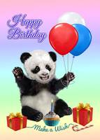 Baby Panda's Happy Birthday Wish
