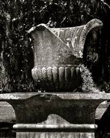 Old Savannah Urn #1_B&W