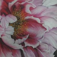 SINGLE PINK PEONY Art Prints & Posters by KARIN DAWN BEST