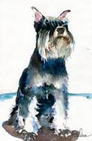 schnauzer | dog painting | animal art | tramp