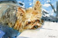 Yorkie painting | dog painting | animal art | book