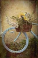 Bohemian Bicycle
