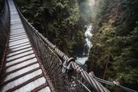 Lynn Canyon Park - Suspension Bridge