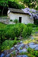 Pump House Dressed in Wisteria