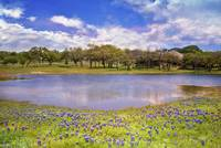 Hill Country Blues