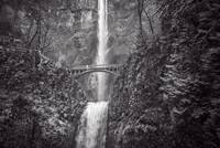 The Bridge at Multnomah Falls in Black & White