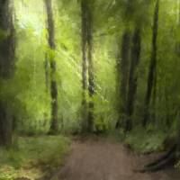 June in the Sacred Grove Art Prints & Posters by D. Brent Walton
