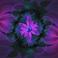 Beautiful Ultraviolet Lilac Orchid Fractal Flowers