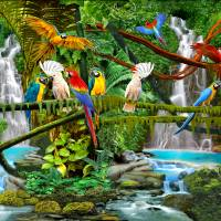 PARROTS IN PARADISE Art Prints & Posters by Glenn Holbrook