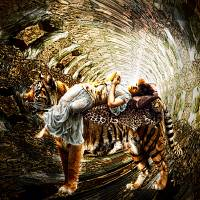 IN THE TUNNEL Tiger 455 Art Prints & Posters by Emily Colosimo