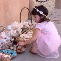 Girl and seashells