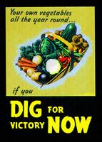 Dig for Victory Gardens