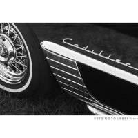 Cadillac Emblem BW Art Prints & Posters by David Caldevilla