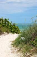 Beach Bend by Carol Groenen