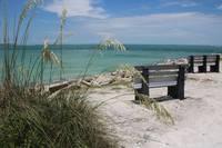 Beach Benches by Carol Groenen