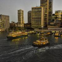 Darling Harbour At  Twilight Art Prints & Posters by Paul Coco