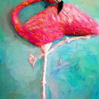 FLAMINGO BY TOM SACHSE Art Prints & Posters by Tom Sachse