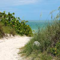 Path to the Beach Art Prints & Posters by Carol Groenen