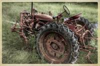 red-tractor-in-weeds2