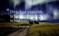 Inspirational Timeless Quotes - ~Teddy Roosevelt