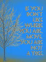 Motivational - if you don't like where you are, mo