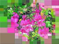 GIANT AZALEAS AND COLORFUL GEOMETRY
