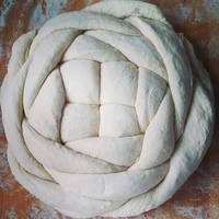Knotted Bread Dough