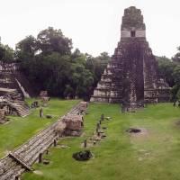 Tikal Gran Templo Jaguar Art Prints & Posters by Shimona Carvalho