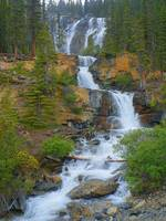 Tangle Falls - Jasper National Park