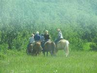 Horseback Riding in Waterton Lakes National Park