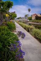 Summertime Along the Venice Canals