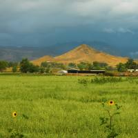Summer View of  Hay Stack Mountain Art Prints & Posters by James